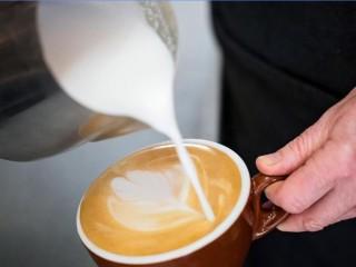 Café Taking $8000 pw, Rent $683pw, Ringwood