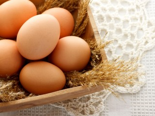 Run your own Egg-citing business from home