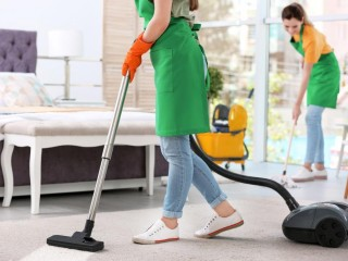 150% ROI Domestic Cleaning est. 12 years (BB)